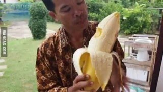 The Biggest & The Largest Banana In The World