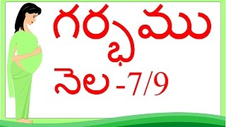 Pregnancy | Telugu | Month by Month | Month 7 | Week 25 to week 28 | గర్భం నెల 7