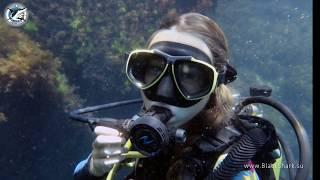 видео Бассейн в Одессе: записаться на плавание по доступной цене! Сеть фитнес-клубов