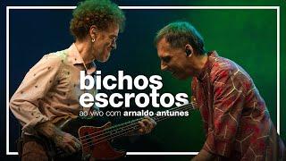 Baixar Nando Reis e Arnaldo Antunes - Bichos Escrotos (ao vivo em São Paulo)