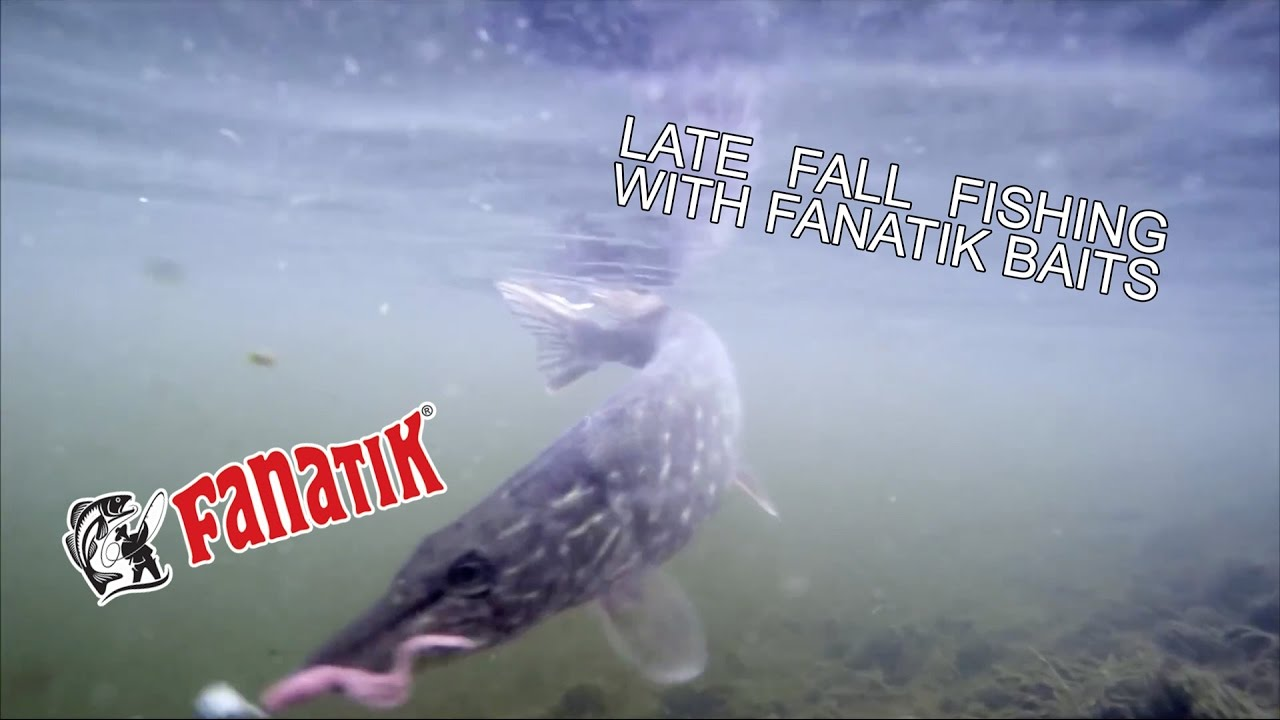Fanatik Baits