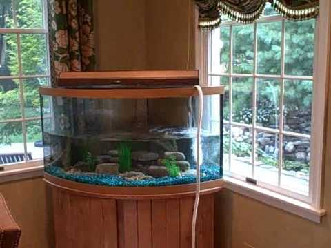 How To Install An Aquarium - Time Lapse Video