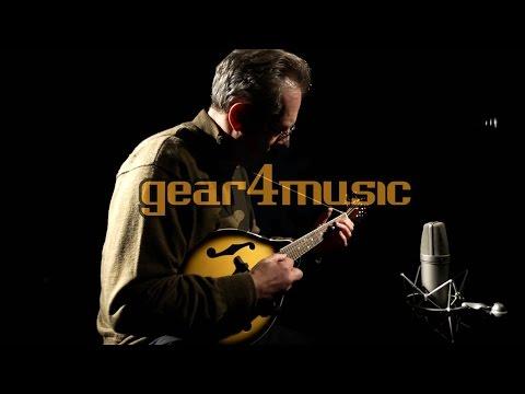 Mandolin by Gear4music