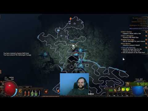 Safe and Easy Wander/Bow Ranger Levelling