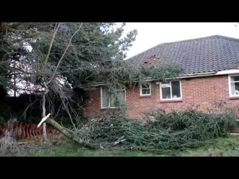 Suspected tornado rips through properties in the South Norfolk village of Forncett St Peter