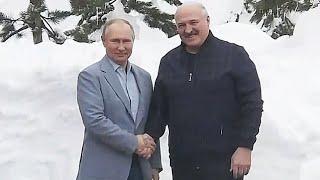 Встреча Лукашенко и Путина в Сочи: что говорят о переговорах эксперты?