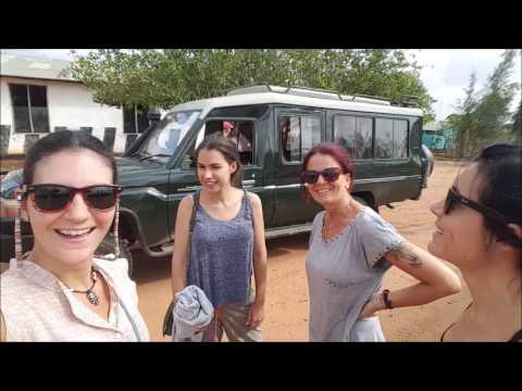 Safari Tsavo National Park Kenya