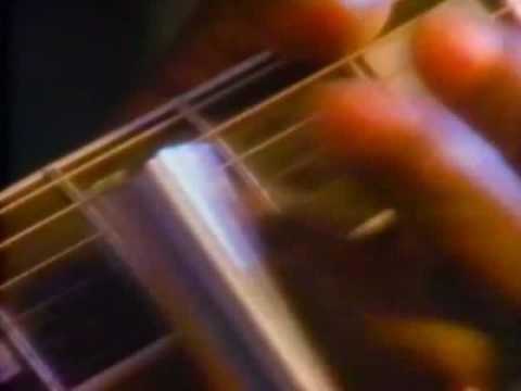 Budweiser AD guitar ver.