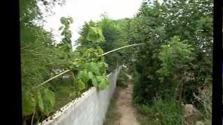 Безумный отдых в Тайланде дикарем, отчет трех друзей(Это вариант Виктора. Мой вариант: http://youtu.be/7kyk80Rfyu0 Одна из моих первых поездок в Таиланд дикарем. 1.5 часа видео..., 2013-01-13T07:28:48.000Z)
