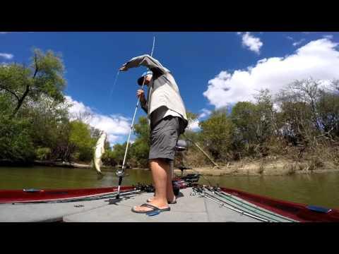 Bass fishing after the flood joe pool lake tx 16 for Joe pool lake fishing report