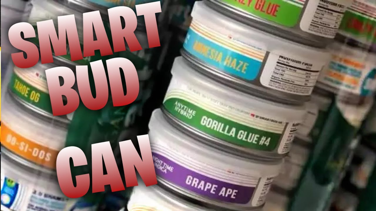 SMARTBUD CAN REVIEW