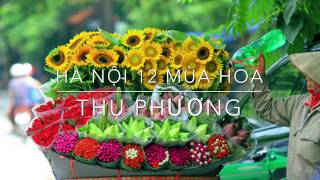 Hà Nội 12 Mùa Hoa - Thu Phương