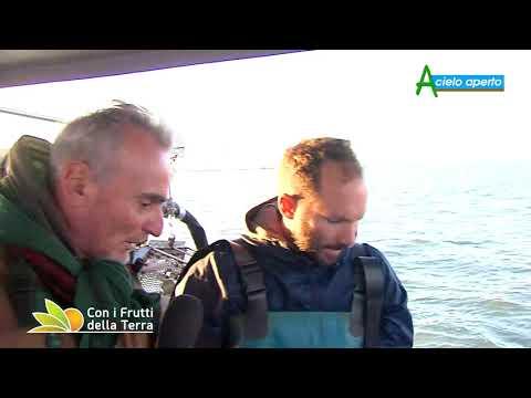 Puntata del 18/10/20 –  1° parte – A Goro con gli agricoltori del mare
