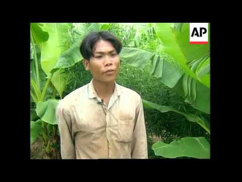 CAMBODIA: FARMERS TURN TO GROWING MARIJUANA