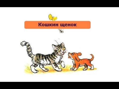Трек Сборник Крошка Енот - В. Берестов - Кошкин щенок в mp3 320kbps
