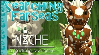 A Seer of Great Healing Rises 🌿 Niche: Searching the Farseas • #12