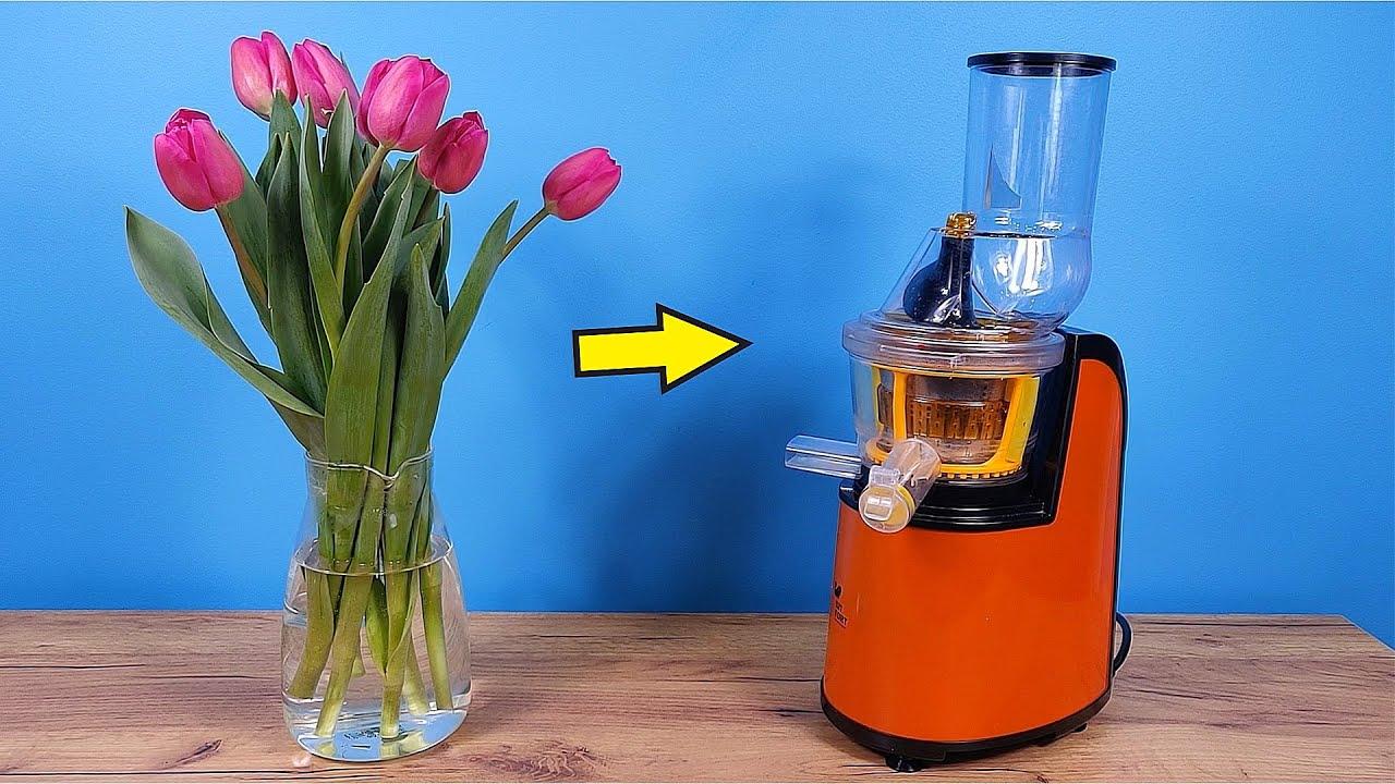 Что если выжать сок из сьедобного тюльпана? Какой он будет на вкус?