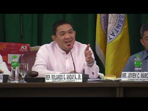 Andaya scolds auditor over 'mind boggling' deals of construction firm