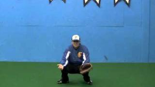 Catcher Position Stances