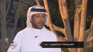 الفارس أحمد الجنيبي .. خطوات واعدة في عالم إنتاج الخيول
