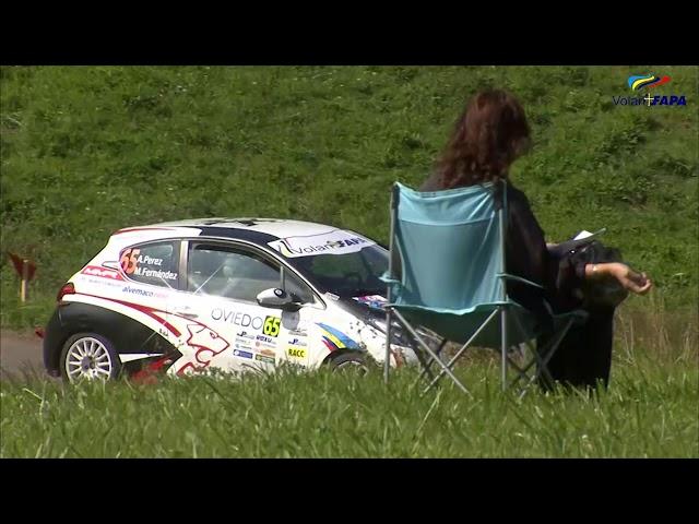 Volan FAPA 2019 - 56 Rally Princesa de Asturias - Alejandro Perez   Abandono