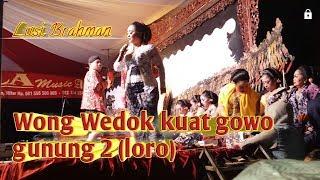 Gambar cover Wong wedok kuat gowo gunung kembar Lusi, Yudho, andik tb & ki minto darsono
