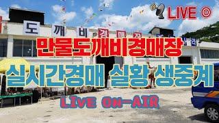 월요일 만물도깨비경매장 실시간실황생중계 LIVE (2020.02.24)