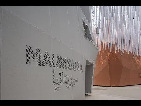 المعارضة الموريتانية ترجئ دعوتها للتظاهر  - نشر قبل 5 ساعة