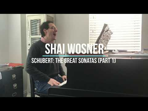 Shai on Schubert, Episode 2: Sonata in C Minor, D. 958