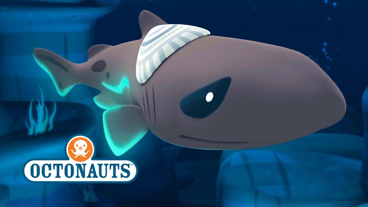 Octonauts: Lantern Shark Discovery - YouTube