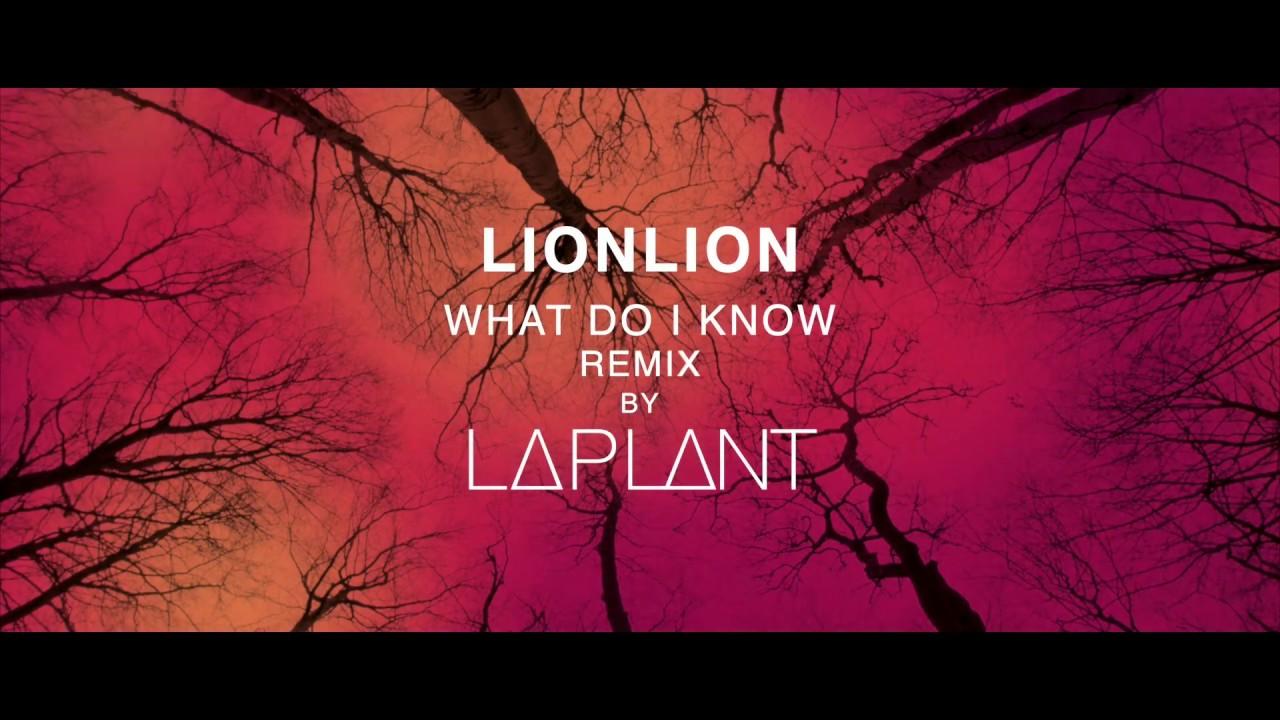 Download LIONLION - What do I know (L∆PL∆NT Remix)