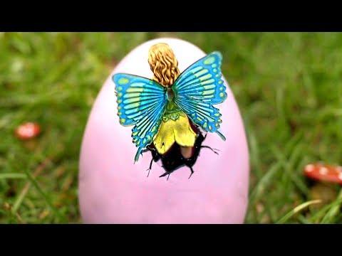 Fairy Egg Hatches!