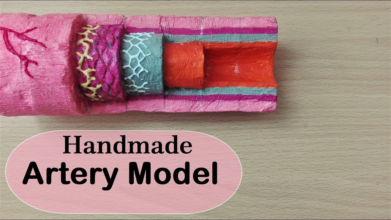 How to make Artery layers Model | 3d Styrofoam carving