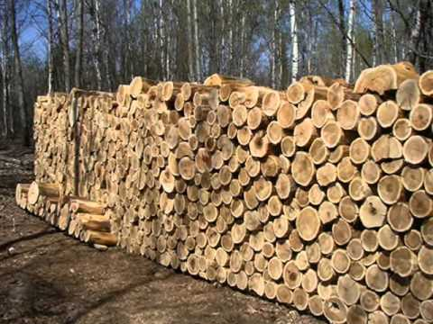 Top 10 Natural Building Materials (VIDEO)