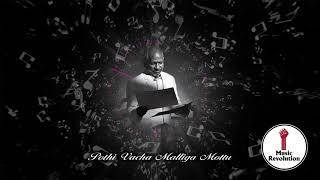 Pothi Vacha Malliga Mottu Song Lyrics