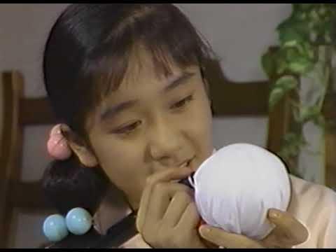 茅野佐智恵-15秒のシンデレラ~CMの美少女たち-2 (1990)