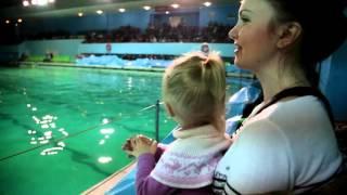 Дельфинарий (Санкт-Петербург)(13.12.2014., 2015-10-20T13:56:05.000Z)