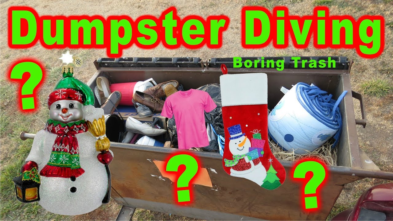 Image result for dumpster diving for christmas stuff
