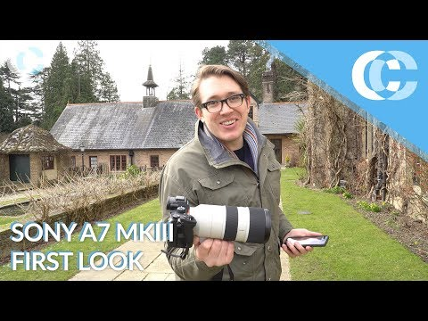 Sony a7 III Great Value In High Quality 120fps FHD! - Hi