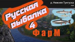 Русская рыбалка 4 нижняя Тунгуска троллинг фарм
