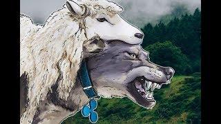 Биткоин, забой овец еще впереди