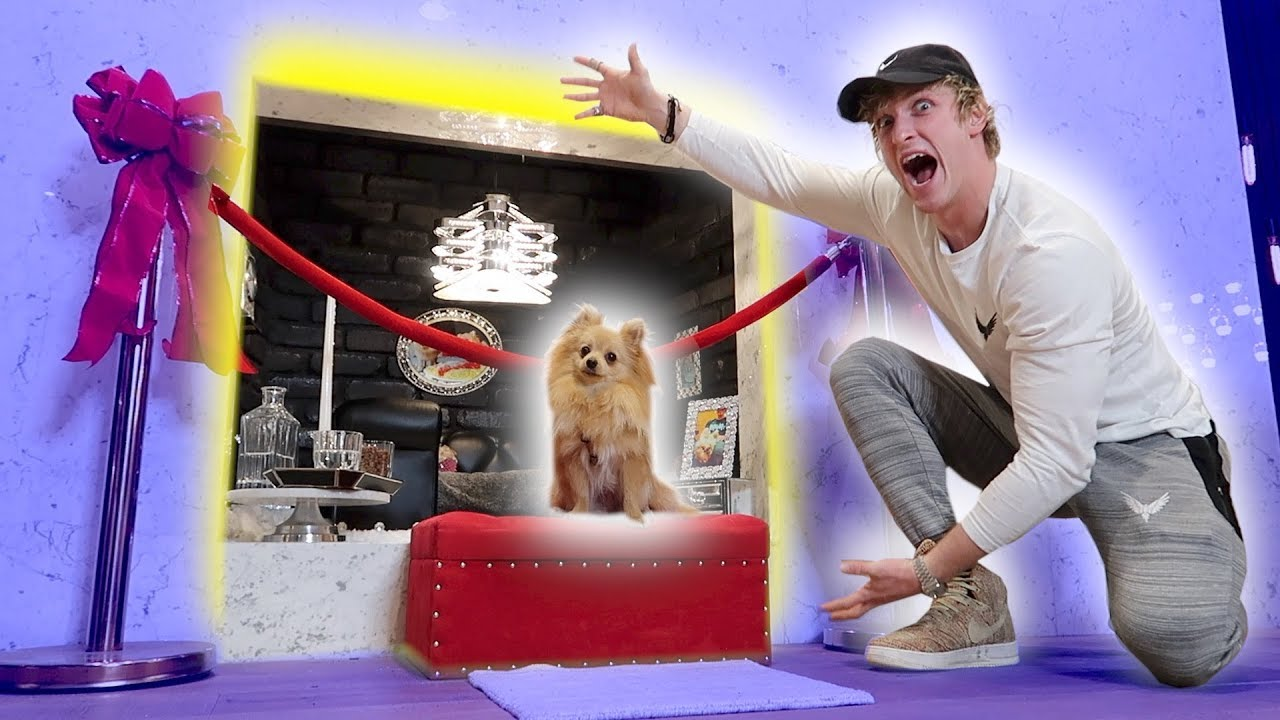 WE BUILT KONG A PRIVATE SMASH ROOM!