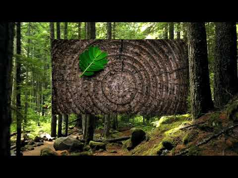 Keezhadi Civilization | Tamil | Arunodhayan from YouTube · Duration:  3 minutes 37 seconds