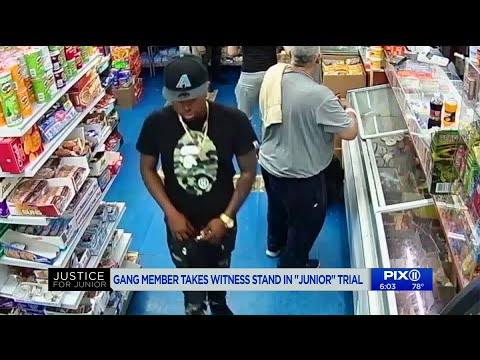Gang member turned key witness reveals he left bodega `at the moment that I saw Junior`s face`