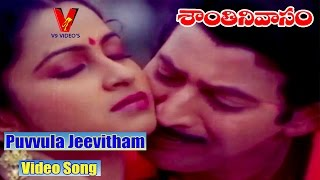 Puvvula Jeevitham VIDEO SONG  SHANTHI NIVASAM   TELUGU MOVIE KRISHNA RADHIKA SUHASINI V9 VIDEOS