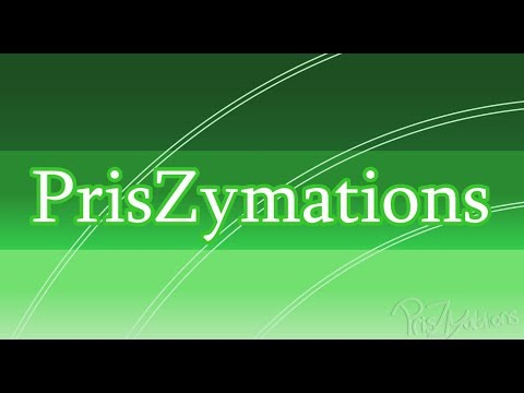PrisZymations Channel Intro