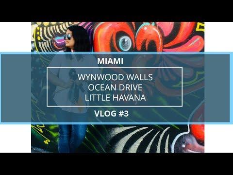 MIAMI VLOG Part 3 (Wynwood Walls, Little Havana , Ocean Drive ) In 4K    FREE MIAMI ATTRACTIONS