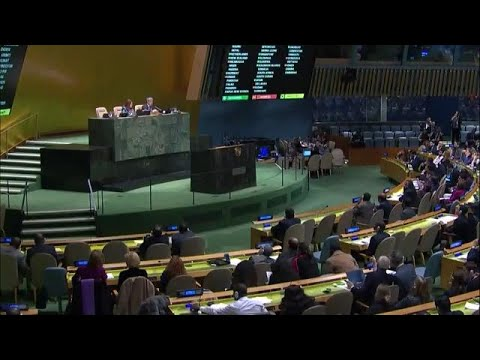 US resolution to condemn activities of Hamas voted down in General Assembly