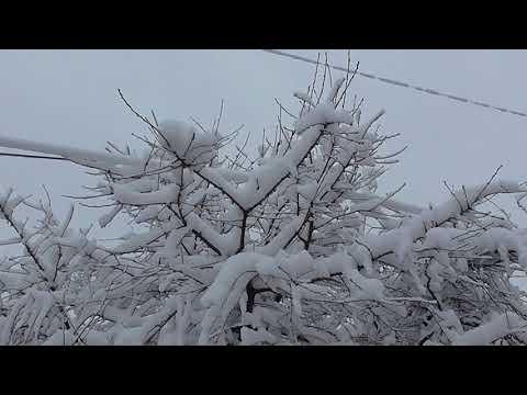 С праздником Крещения! У нас много снега...