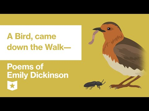 Poems Of Emily Dickinson | A Bird, Came Down The Walk—